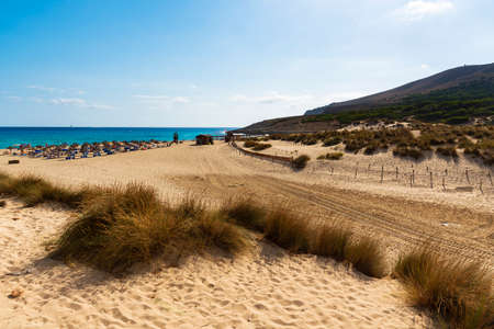 Access road to the regeneration reserve of sand dunes on the beach of Cala Mesquida Majorca Spain, on the bottom the umbrellas