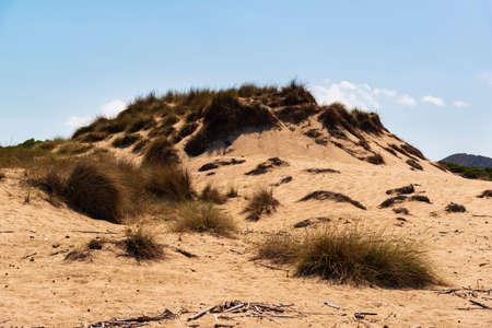 Sand dune regeneration reserve on the beach of Cala Mesquida, Majorca, Spain Banco de Imagens