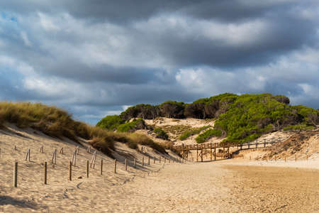 Regeneration reserve of sand dunes on the beach of Cala Mesquida Majorca Spain, the sky is cloudy Stok Fotoğraf