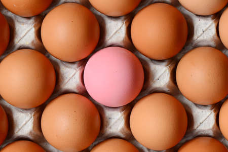 Chicken eggs and colored eggs on tray in supermarket. Stock Photo