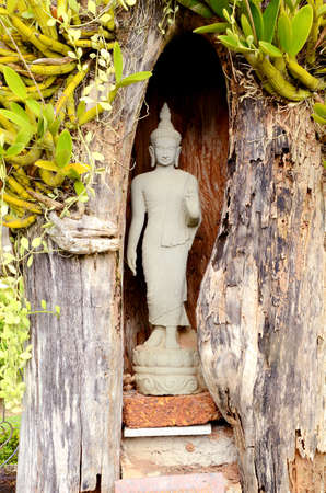 aukana buddha: An ancient Buddha statue placed in wood cave
