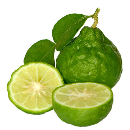 Bergamot Herb  photo