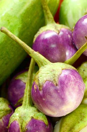 cowslip: Eggplants  Stock Photo