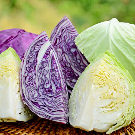 Cut organic green and purple cabbage in closed-up on natural green background