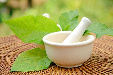pestle: Porcelain herbal medicine grinder  Stock Photo