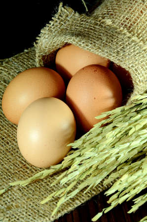 Organic eggs in burlap sac and paddy on dark background  photo