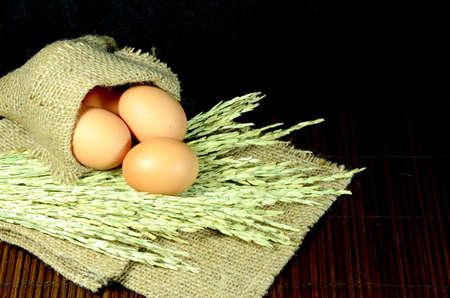 burlap sac: Organic eggs in burlap sac and paddy on dark background