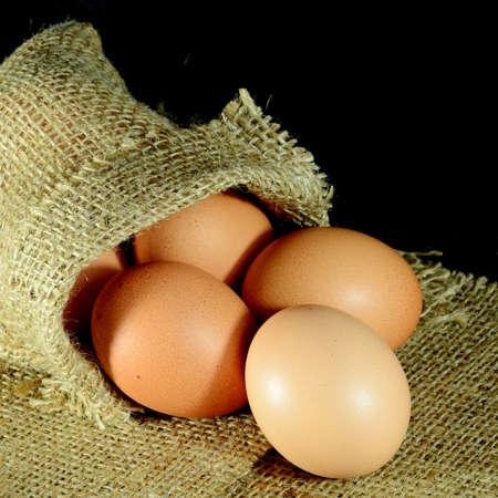 burlap sac: Organic eggs in burlap sac on dark background