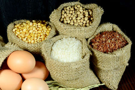 Organic products of soy bean, corn, eggs, coarse rice and white rice in burlap sac on dark background
