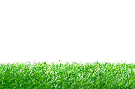 Artificial Turf for Soccer Field Isolated on White Background