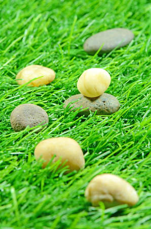 good quality: Good Quality Artificial Turf Decorated with Natural Rock  Stock Photo