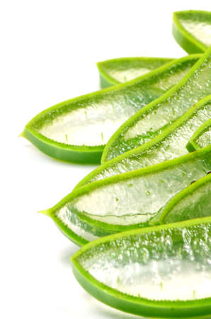 Slice Aloe Vera  Aloe barbadensis Mill ,Star cactus, Aloe, Aloin, Jafferabad or Barbados  a very useful herbal medicine for skin treatment and use in spa for skin care  photo