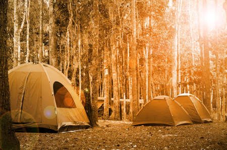 camping tent: Big dome and camping tents in the evening light.