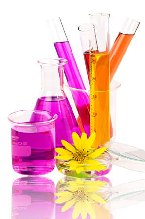 experimentation: Set of laboratory equipment with chemical solutions and young sunflower isolated on white background with clipping path.