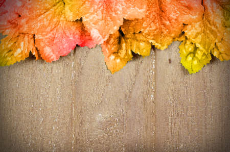 Old wood and Autumn Maple Leaves Background.