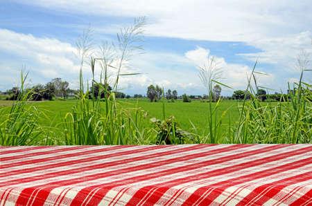 manteles: Antecedentes de picnic al aire libre con mesa de picnic. Foto de archivo