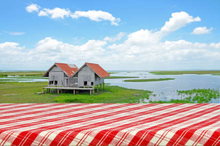Outdoor Picnic Background with Picnic Table. photo
