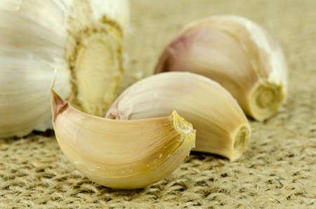 gunny: Garlic on Gunny Background.