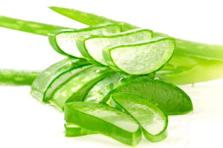 aloe barbadensis: Aloe Vera (Aloe barbadensis Mill.,Star cactus, Aloe, Aloin, Jafferabad or Barbados) a very useful herbal medicine for skin treatment and use in spa for skin care.