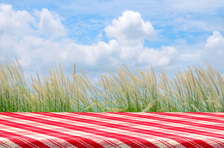 picnic tablecloth: Outdoor Picnic Background with Picnic Table. Stock Photo