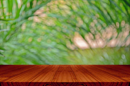 view window: Blurred backyard garden background with perspective wood window view.