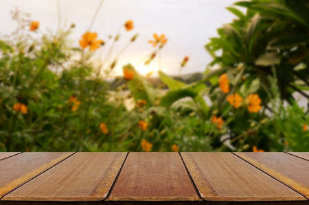 Blurred vintage backyard garden background with perspective wood window view.