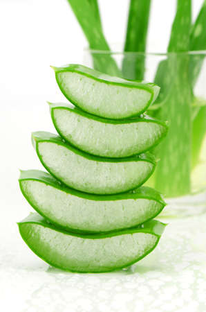 aloe barbadensis: Slice Aloe Vera (Aloe barbadensis Mill.,Star cactus, Aloe, Aloin, Jafferabad or Barbados) a very useful herbal medicine for skin care and hair care.