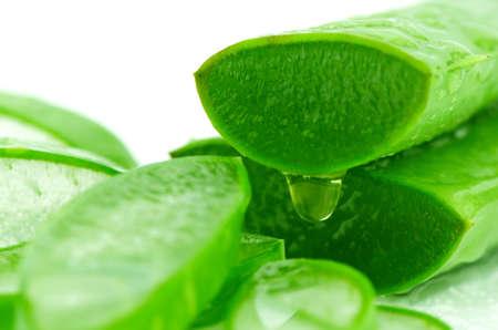 Slice Aloe Vera (Aloe barbadensis Mill.,Star cactus, Aloe, Aloin, Jafferabad or Barbados) a very useful herbal medicine for skin care and hair care.