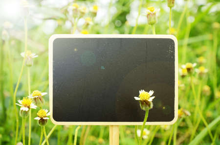 Wooden board signs on small flowers background with warm light tone. Stock Photo