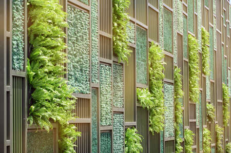green wall: Green Wall with Vertical Demo Gardenning in Warm Light Tone.