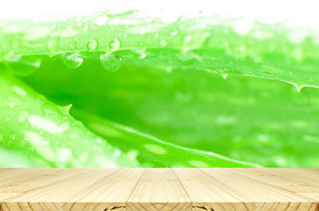Closed-up of Aloe Vera Leaves Background with Rain Drops and Wood Table.