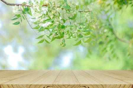 picknick: Perspective wood table and nature background with warm morning light tone for advertising and product display.
