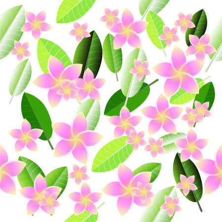 Pink Frangipani seamless pattern. Stock Photo