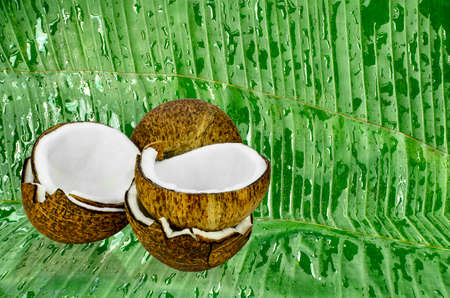 Fresh coconut on banana leaves background for product display in nature style.