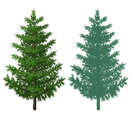 beautify: trees Christmas tree for the holidays and for your pictures of nature forests and plantations in cities and villages