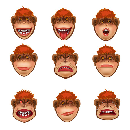 emotions in monkeys its a fun and funny person laughter, anger, wink, surprised, disgust, crying