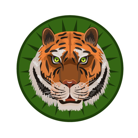 toothed: icon predator tiger green eyes, growls and looks at you for the icon and the website Illustration