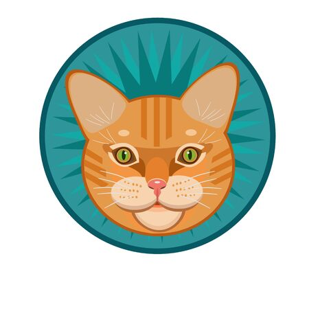 purring: Icon yellow, red tabby cat with a mustache, and an icon for the site Illustration
