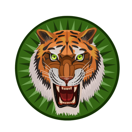 whiskers: Icon angry tiger with an open mouth, visible teeth, whiskers, green eyes and an icon for the site