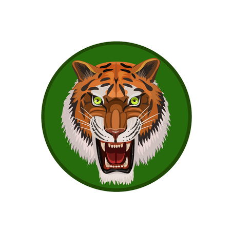 enemies: The tiger looks at evil green glowing eyes, protects itself from enemies for icons on a computer, website and so on