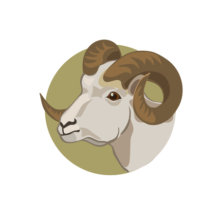 hoofed: Icon mountain sheep live on the cliffs and climbs to the highest mountains, its winding horns make it strong Illustration