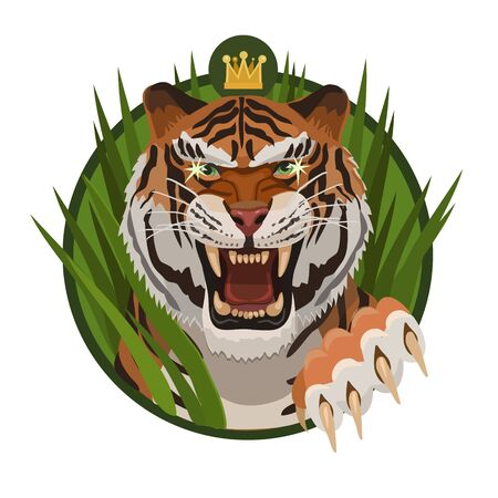 growling: King tigers growling to protect their territory and their young against other animals Illustration