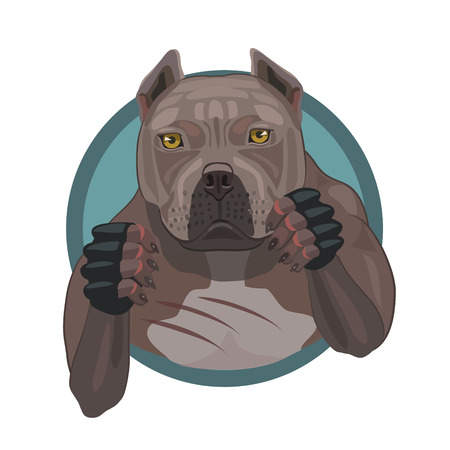 Fighting dog pit bull ready to attack and defense in the battle arena games fist fight Illustration
