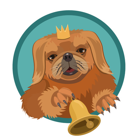 Dog Pekingese demanding Princess, very persistent, ringing the bell, so she paid attention and took care of it Illustration