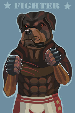 Dog Rottweiler fighter vector illustration. he stands in the ring he attacks and protects against rivals this screensaver on your mobile phone who is calling you Banco de Imagens - 100698617