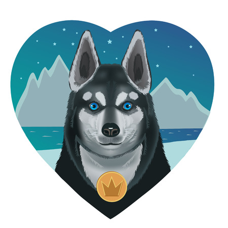 Love Husky dog ??hearts in their eyes so blue sky who is not afraid of icy
