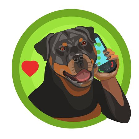 Rottweiler dog thoroughbred he calls on the phone, he is loved and appreciated as a friend and defender of your home and apartment