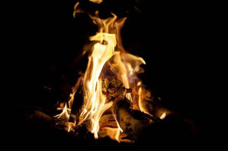 wood is burning in fire in lut desert