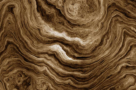 coarse: Texture of roots of tree with wavy lines and age rings. Abstract background.