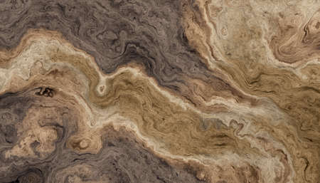 Texture of roots of tree with wavy lines and age rings. Abstract background. Stock Photo - 97434539